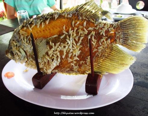 Deep Fried Elephant Ear Fish